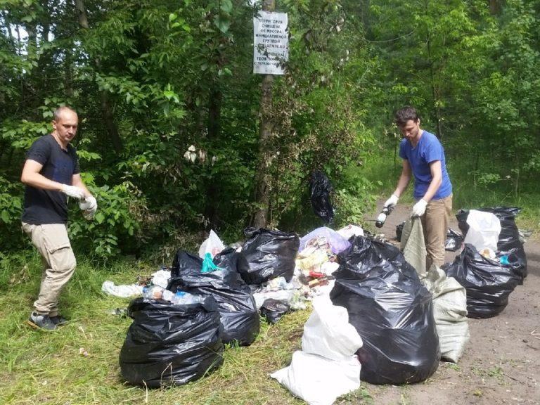 «Экология объединяет каждого»: как в Ярославле появились современные субботники